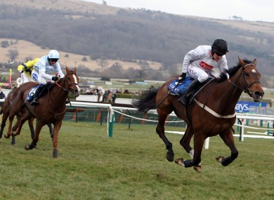 Barry Geraghty guides Spirit River home in last year's Coral Cup at Cheltenham