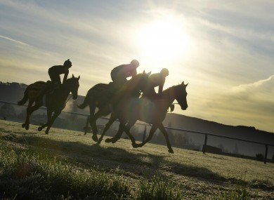 Trainer Dessie Hughes' horses exercise on the gallops at Cheltenham yesterday.