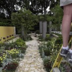 A photographer standing on a ladder takes a photo of the Daily Telegraph Garden - winner of the Best in Show prize.