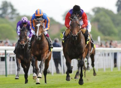 Carlton House ridden by Ryan Moore (right) beats Seville ridden by Christophe Soumillon (left) to win the totesport Dante Stakes.