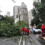 In NYC's Central Park as Irene passes through the city (AP Photo/Elise Amendola)