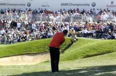 Rose in bloom at BMW Championship