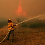 Firefighters from around the state battle a large wildfires on Highway 71 near Smithville, Texas. (AP Photo/Erich Schlegel)
