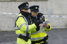 Firearms and drugs seized in Dublin
