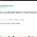 One Jedward fan dismissed criticisms from 'haters'