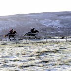 Racehorses on the gallops at Middleham in the north of England. (John Giles/PA Wire)