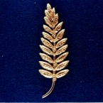 A replica of the gold olive branch, a symbol of peace, Armstrong left on the moon's surface during Apollo 11's mission. (NASA)