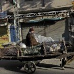 A Pakistani worker pulls a cart as a customer sits atop with his chickens, along a road in Rawalpindi, Pakistan. (AP Photo/Muhammed Muheisen)
