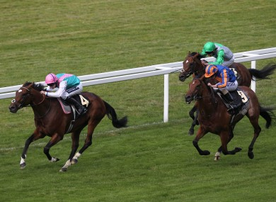 Frankel, left, leads home the field in the St James's Palace Stakes at Royal Ascot last year.