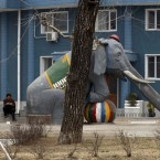 A North Korean resident rest near an playground slide in the form of an elephant in Pyongyang (AP Photo/Ng Han Guan)