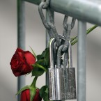 Roses are fixed on a fence to commemorate the victims in front of the Oslo court where Norwegian Anders Behring Breivik is on trial to face terrorism and premeditated murder charges, Oslo, Norway.(AP Photo/Frank Augstein)