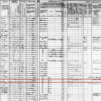 The census records show us that when Elvis Presley was 5, his father was a carpenter and his mother was a seamstress.