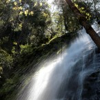 Water plummets over Bridal Veil falls near the Sierra Nevada's Fresh Pond, Calif., Tuesday, May 1, 2012. Due to a dryer then normal year and a warm spring that brought an early snow melt, the California Department of Water Resources found no snow during the snow survey, held Tuesday at the Echo Summit survey site.(AP Photo/Rich Pedroncelli)