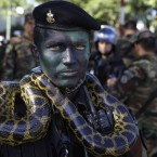 Marine officer Humberto Gimenez poses for a photo with a snake before an Independence Day parade in Asuncion, Paraguay. (AP Photo/Jorge Saenz)