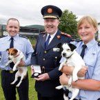 Pictured with Garda Commissioner Martin Callinan, centre, are Gda Fiona Tighe, who is based in Blackrock and uncovered a puppy farm whose owner was selling the puppies from the boot of his car, and Gda Stephen Neylon, based in Tallaght, who rescued a terrier who had been beaten with a baton. Photo: Mark Stedman/Photocall Ireland