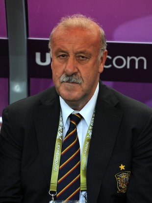 Del Bosque has warned his side not to underestimate Ireland.