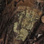 A mummy is seen at a Ming dynasty royal tomb on June 12, 2012. (Photo by Wei Yonggang/ChinaFotoPress/PA)