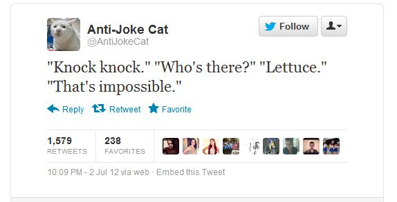 Anti-Joke Cat 2