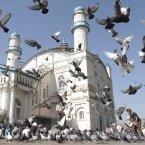 Pigeons fly outside Shah-e-Dushamshera's mosque where Afghans offer the Eid al-Fitr's prayers that marks the end of holy fasting month of Ramadan in Kabul, Afghanistan, Sunday. (AP Photo/Musadeq Sadeq)