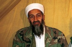 Pentagon checking Bin Laden raid book for leaks