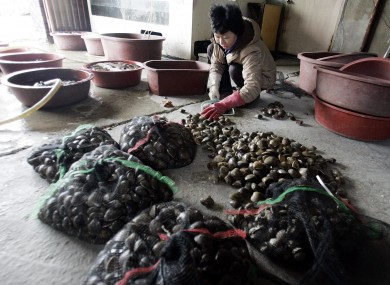 The US's FDA warned that some South Korean shellfish had been contaminated by human waste due to dodgy toilets.