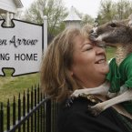 Carr says she and her therapy kangaroo, Irwin, are leaving Broken Arrow and moving to McAlester because she was told by animal control that by keeping the disabled kangaroo in her home she was violating city ordinance and will receive fines or he will be seized. (AP Photo/Sue Ogrocki, File)