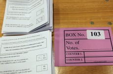 Legal challenge begins over Children's Referendum result