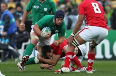 6 Nations: O'Brien determined to avoid low blows in Welsh cauldron