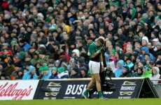 Ireland's Zebo out for 10 weeks after suffering foot injury