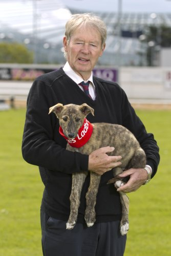 Eamon î Muircheartaigh with greyhound puppy Caoimhe 25/6/2012