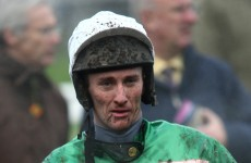 JT McNamara's paralysis confirmed following Cheltenham fall